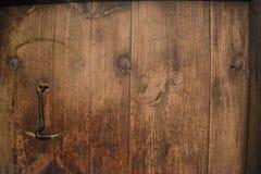 自然木头 库存照片