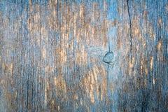自然本底-老树纹理,参差不齐的被绘的蓝色,绿松石削皮油漆 库存照片