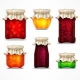 自然果子果酱保存瓶子和减速火箭的盒盖 向量例证