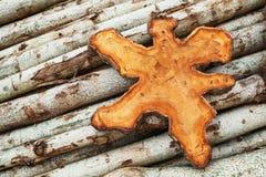 自然柚木木材树桩和日志背景 免版税库存照片