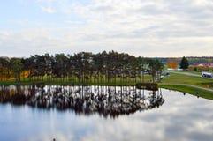 自然树树的风景和反射在池塘湖河的水中 免版税库存图片