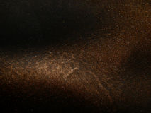 自然棕色皮革纹理与黑树荫和闪闪发光的 库存照片