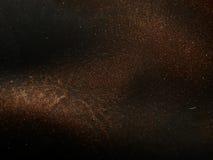 自然棕色皮革纹理与黑树荫和闪闪发光的 免版税图库摄影
