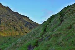 自然楼梯被雕刻对位于南冰岛附近的青山Skogafoss瀑布 免版税库存图片