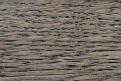 自然橡木样式 橡木纹理宏观射击  喂res照片 免版税库存照片