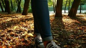 自然步行秋天女孩 股票录像