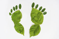 自然步行绿的脚 库存照片