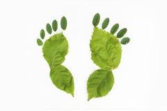 自然步行绿的脚 免版税库存照片