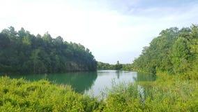 自然池塘 图库摄影