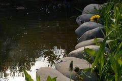 自然池塘 免版税库存照片