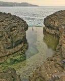 自然池 免版税库存图片