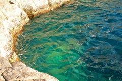 自然池 免版税库存照片