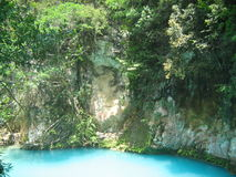 自然池 库存图片