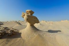 自然沙子雕塑领域 库存照片