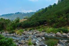 自然河在有岩石的森林使看法环境美化 免版税库存照片