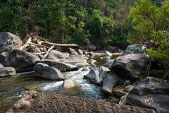 自然河在有岩石的森林使看法环境美化 免版税库存图片