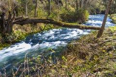 自然河天桥 库存图片