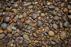 自然河石头背景 免版税图库摄影