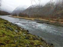 自然河雾山 库存图片