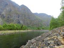 自然河雾山 库存照片