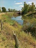自然河 库存图片