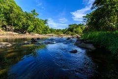 自然河 免版税库存照片