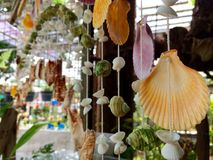 自然海壳流动垂悬在商店 免版税库存图片