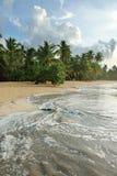 自然海滩,多米尼加共和国 免版税库存图片
