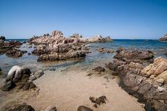 自然海运横向在撒丁岛 图库摄影
