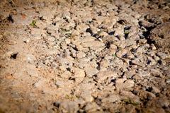 自然混凝土背景  免版税库存照片