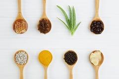 自然温泉成份 咖啡豆,胡椒,姜黄,姜, 免版税库存图片