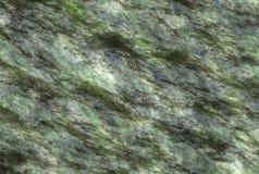 自然湿石纹理。被绘的背景 图库摄影
