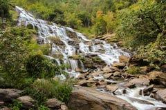自然瀑布在热带森林里 库存图片