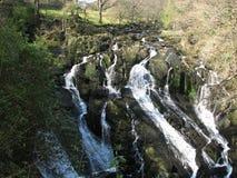 自然瀑布燕子在威尔士落 免版税图库摄影