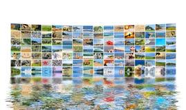 自然照片(动物、风景,海滩) 免版税库存图片