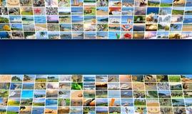 自然照片(动物、风景,海滩) 图库摄影
