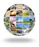 自然照片(动物、风景,海滩) 免版税库存照片