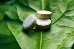 自然物质、同种疗法药物、绿色叶子和片剂三个药片  免版税库存图片