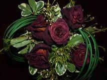 自然玫瑰有它 免版税图库摄影