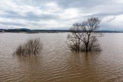 洪水-自然现象 溢出的湖 库存照片