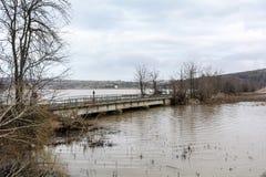 洪水-自然现象 溢出的湖 免版税库存图片