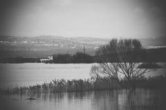 洪水-自然现象 溢出的湖 库存图片