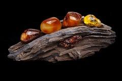 E 自然琥珀不同颜色几个片断在扔石头的木头大片断的  免版税库存照片