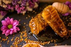 自然甜蜂窝和花粉在桌上 免版税库存图片
