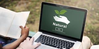 自然生态环境保护自然生活概念 库存照片