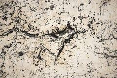 自然白色和黑古色古香的石墙特写镜头照片  免版税库存照片