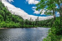 自然的一个美好的风景 库存图片