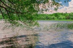 自然的一个美好的风景 免版税库存图片