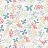 自然的五颜六色的花卉样式 库存图片