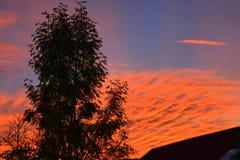 自然的奇迹 在山土坎的日落 与明亮的红色血液颜色的美好的风景 库存照片